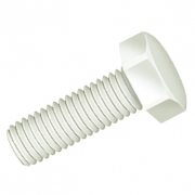 Hexagonal Head Screws - Nylon 6.6